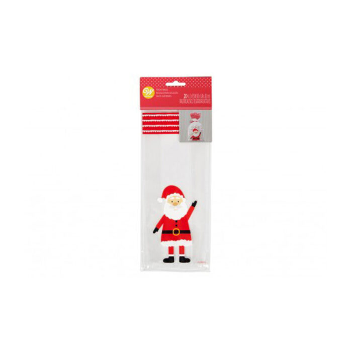 santa treat bag